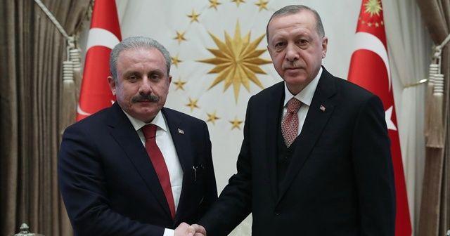 Cumhurbaşkanı Erdoğan, TBMM Başkanı'nı kabul etti