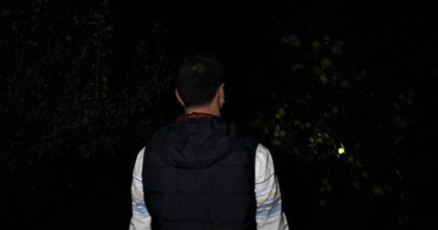 Hırsızlardan bıkan köylü, armut bahçesinde sabaha kadar nöbet tutuyor