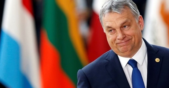 Macaristan Başbakanından 'Barış Pınarı Harekatı'na tam destek