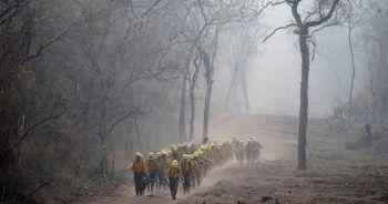 Amazon'daki yangınlar yağışlarla söndü