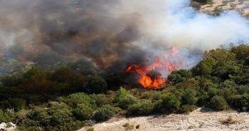 Bahçe temizliği yaparken ormanı ateşe verdi