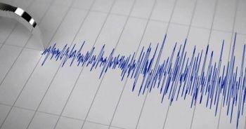 Endonezya'da geçen ay 924 deprem meydana geldi