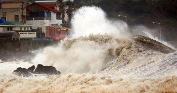 Güney Kore'yi Mitag tayfunu vurdu: 6 ölü, 4 yaralı