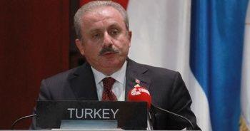 """TBMM Başkanı Şentop: """"Yaptırımlar her zaman uygulandığı ülkeyi güçlendirmiştir"""""""