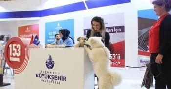 Uluslararası Evcil Hayvan Ürünleri Fuarına Yurt Dışından Büyük İlgi