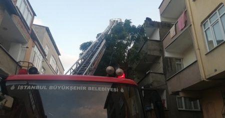 Avcılar'da korkutan çatı yangını