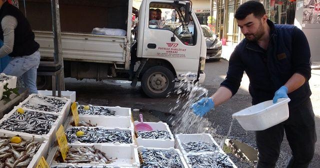 Fiyatı gören vatandaşlar balıkçılara akın etti