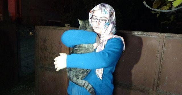 Korkuya kapılan kediye mahalleli sahip çıktı