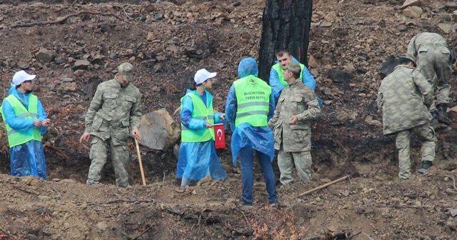 PKK'nın yaktığı alan ağaçlandırılıyor