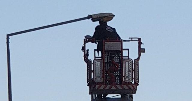 Sokak lambasına takılan güvercinin imdadına itfaiye yetişti
