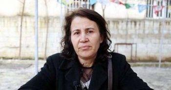 Görevden uzaklaştırılan Suruç Belediye Başkanı tutuklandı