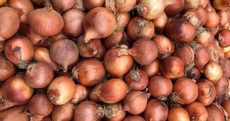 Bangladeş'te soğanın fiyatı kriz çıkardı! Başbakan 'yemeyin' dedi