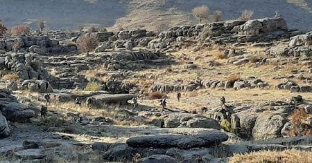 Terör örgütü PKK'ya büyük darbe
