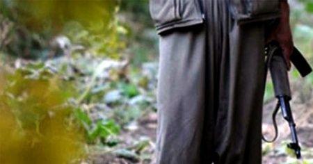 Tunceli kırsalında yakalanan kadın terörist tutuklandı