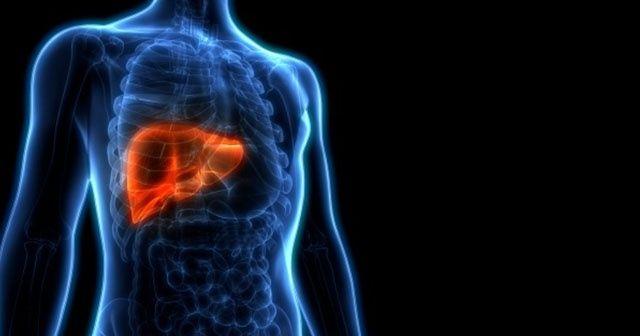 2020'ye sağlıklı karaciğerle girmenin 10 altın kuralı