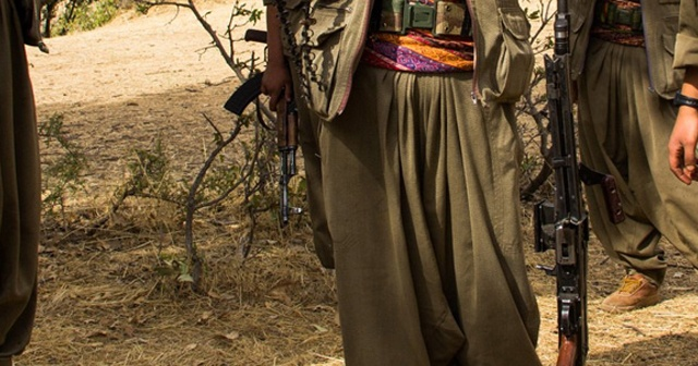 Muş'ta gri kategoride aranan Erdal Tekay isimli terörist etkisiz hale getirildi