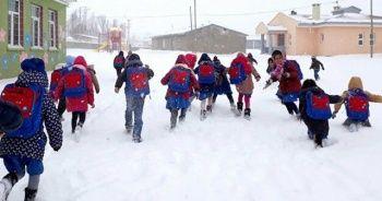 Kar nedeniyle 3 ilçedeki bazı okullarda eğitime ara verildi