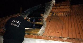 Şiddetli rüzgar Gümüşhane'de de etkili oldu
