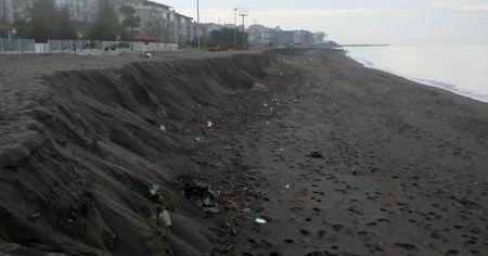 Akçakoca sahilinde şaşırtan görüntü