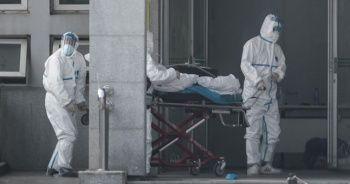 Ölümcül virüsün hangi hayvandan bulaştığı ortaya çıktı