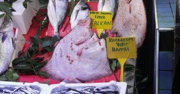 Rekor kırdı! Kalkan balığının fiyatı dudak uçuklatıyor