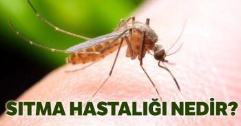Sıtma (Malaria) hastalığı nedir? Sıtma hastalığı nasıl geçer? Henry Onyekuru hastalığı