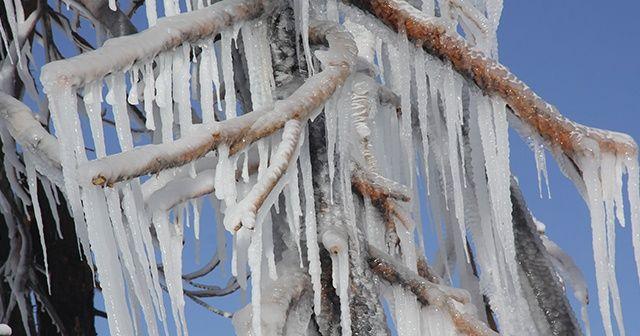 Erzincan buz kesti: Refahiye ilçesi eksi 20'yi gördü