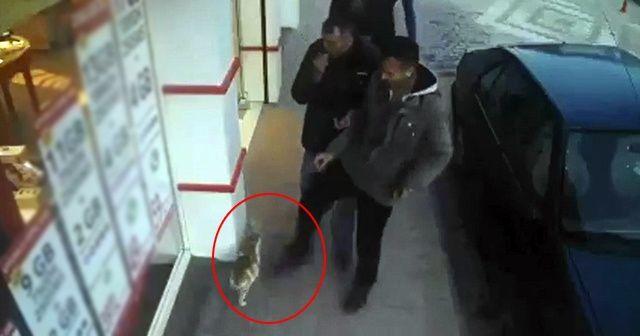 Kediye tekme atan şahsa 947 TL para cezası