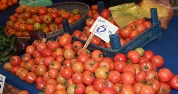 Çeri domatesin fiyatı el yakıyor