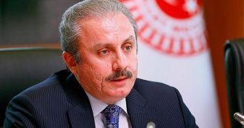 TBMM Başkanı Şentop'tan 'İdlib saldırısı' açıklaması