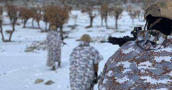 Terör örgütü PKK'nın kış üstlenmesine darbe