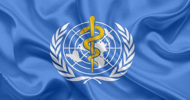Dünya Sağlık Örgütü: Karantina korona virüs salgınını durdurmak için yeterli değil
