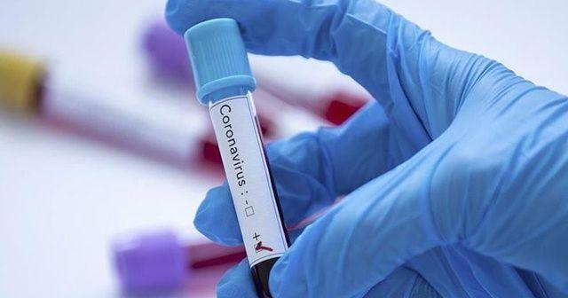 Fransa'da koronavirüsten hayatını kaybedenlerin sayısı 1696'ya yükseldi