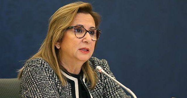 Ticaret Bakanı Pekcan fahiş fiyat artışı tespit edilen firmalara verilen cezaları açıkladı