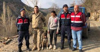 Kaybolan 15 yaşındaki engelli kızı iz takip köpeği Kahraman buldu