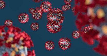 Koronavirüs Belirtileri Nelerdir