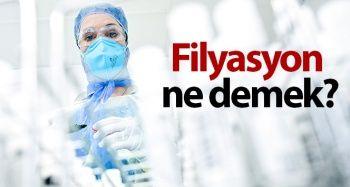 Filyasyon Nedir? / Filyasyon Yöntemi Nedir? / Bulaşıcı Hastalıkların Epidemiyolojisi