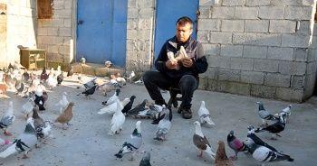 İki günlük sokağa çıkma yasağını güvercinlerinin arasında geçirdi