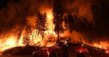 Kazakistan'daki orman yangını söndürüldü