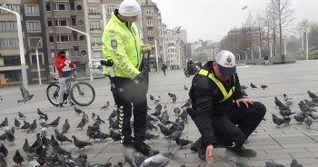 Taksim'de aç kalan güvercinleri trafik polisleri besledi