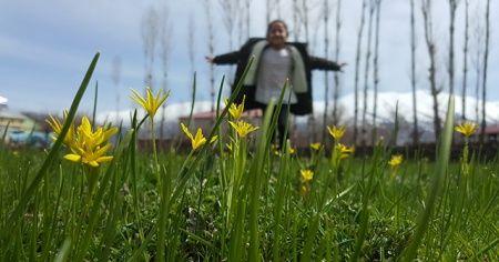 Bitlis'te baharın müjdesi çiçeklerden renk cümbüşü