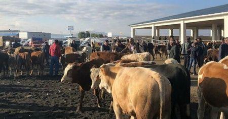 Sivas'ta koronavirüs tedbirleri kapsamında hayvan pazarları kapatıldı