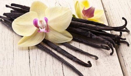 Vanilya Nedir? Ne İçin Kullanılır? Vanilyanın Fayda ve Zararları Nelerdir?