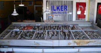 Küçük teknelerle avlanan balıklar tezgahları süslüyor