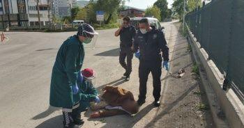 Yolda yatarken bulunan yaşlı adam hastaneye kaldırıldı