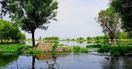 """Bakan Kurum: """"204 yeni millet bahçesi yapıyoruz"""""""