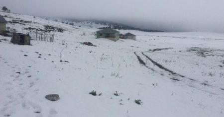 Sivas'ta kar nedeniyle yaylada mahsur kalan çoban ve hayvanları kurtarıldı