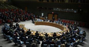 BM Güvenlik Konseyindeki Afrika koltuğunu Kenya kazandı