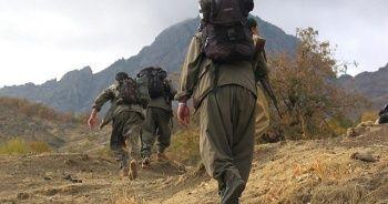Teröristlere darbe üstüne darbe! 3 PKK'lı terörist etkisiz hale getirildi