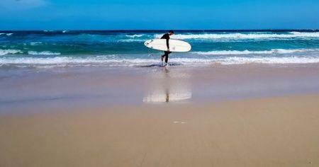 Sörfçü köpekbalığı saldırısında öldü